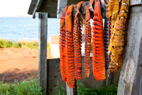 Dried Arctic Char